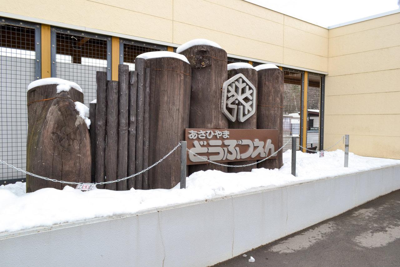 旭山動物園-23