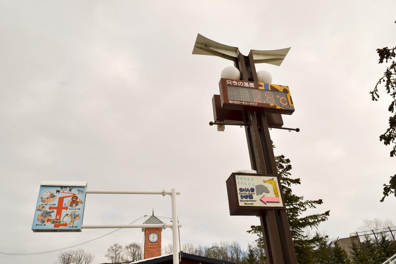 旭山動物園-33