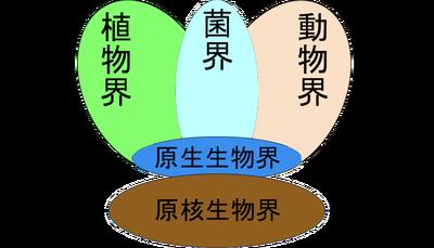 五界説b_edited-2