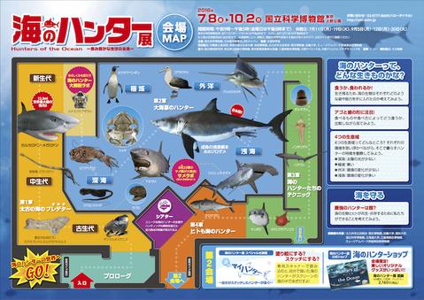 160923 海のハンター展