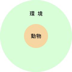 180605 動物