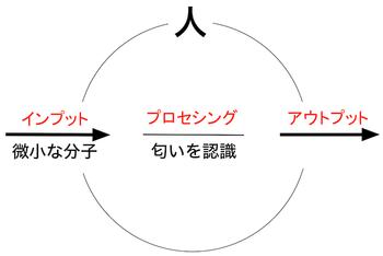 151206 臭覚