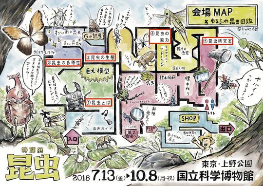 konchu_map