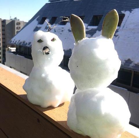 プランターの上に積もった雪で雪だるま