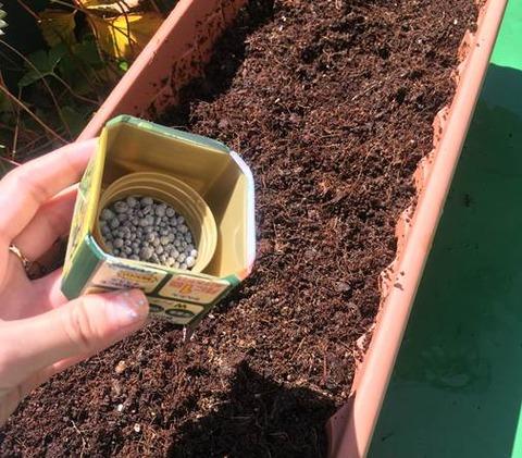 野菜の肥料混ぜ込み