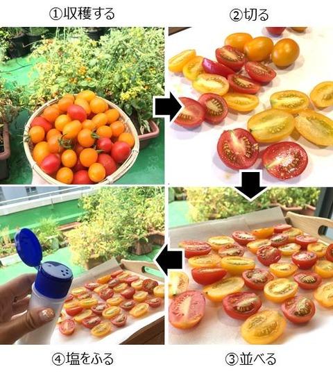 ドライトマトの作り方
