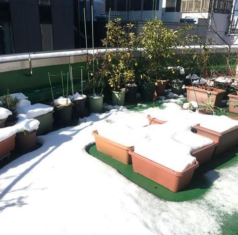 東京千代田区の屋上で撮影0123
