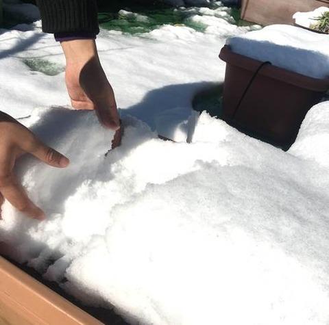 手が凍える