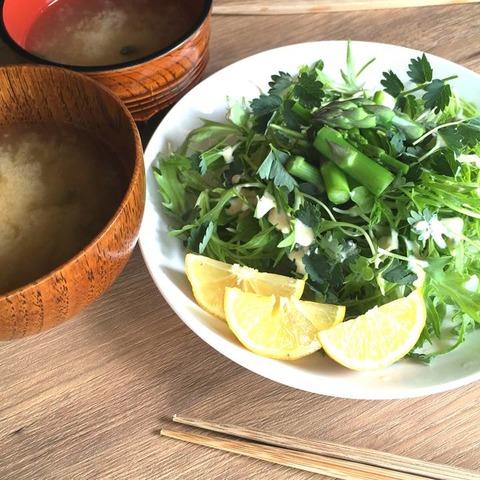 採れたて野菜サラダとお味噌汁