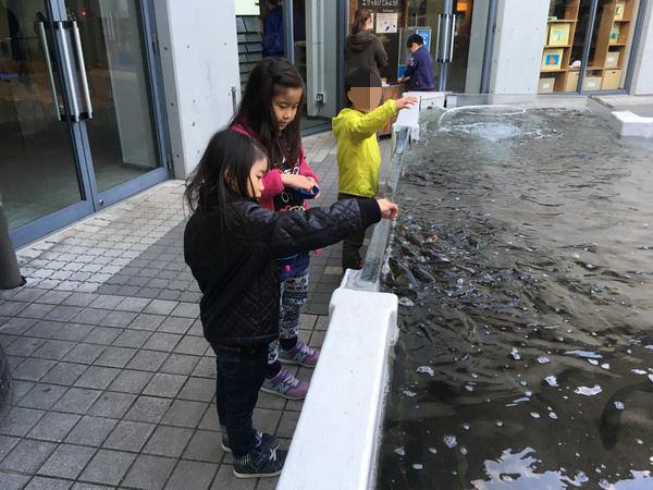 川島パーキング11