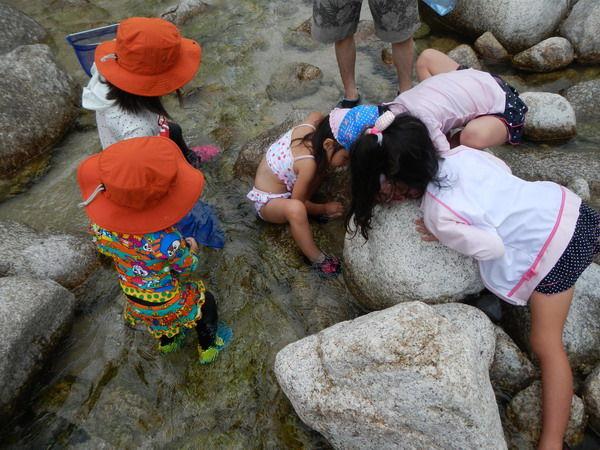 川遊び01