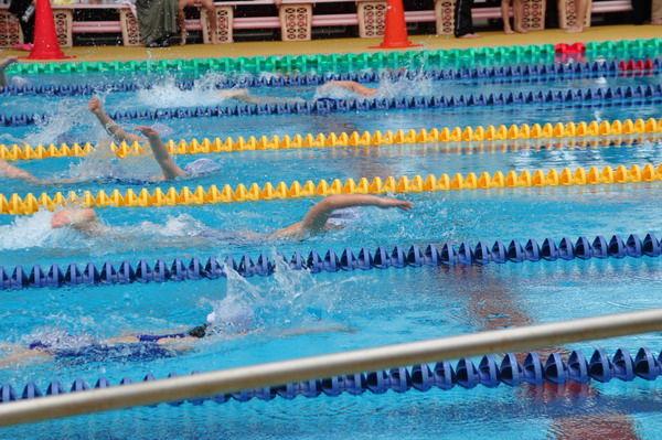 水泳大会02