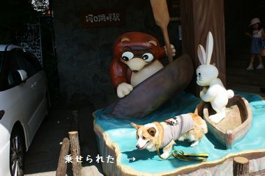 ++嗚呼、短足動物園++