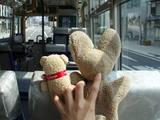 観光周遊バス・・ガラガラでした^^;