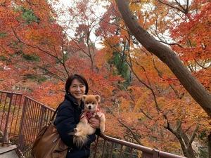 2京都のタンタン