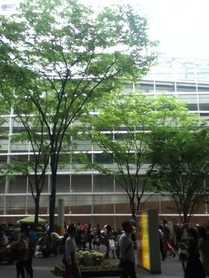 tokyokokusaifo-ramu