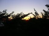 夕日が沈む街