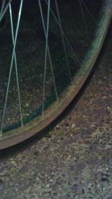 f989327c.jpg