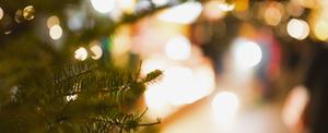 クリスマスイルミ| 探偵事件簿-福岡