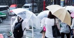 夫(妻)の浮気と雨降り・傘| 探偵事件簿-福岡