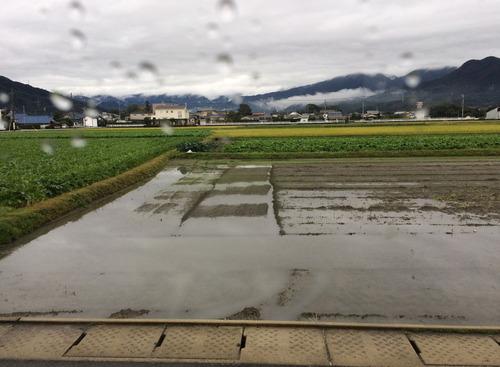 糸島市の浮気調査と夫婦の試練|探偵事件簿-福岡