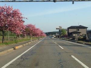 2014-05-04-06-09-15