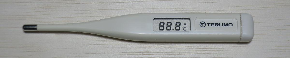 電子 c202 テルモ 体温計