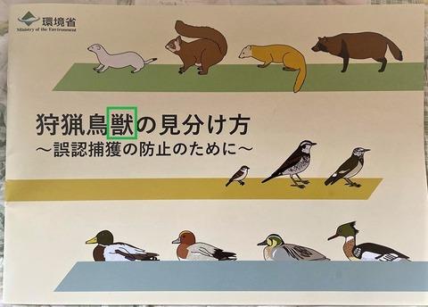 鳥獣の見分け方