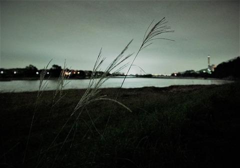 多摩川捜査