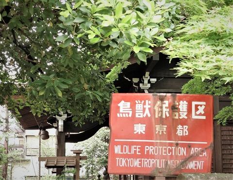 4三峯神社