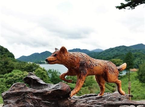 秩父野犬・日本狼