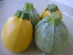 courgette rondes