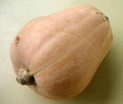 potiron