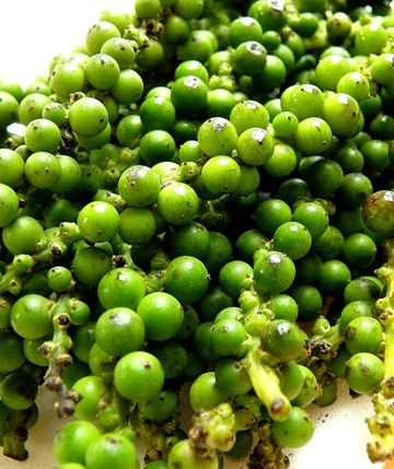 poivres verts1