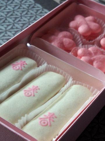 macaron sakura1