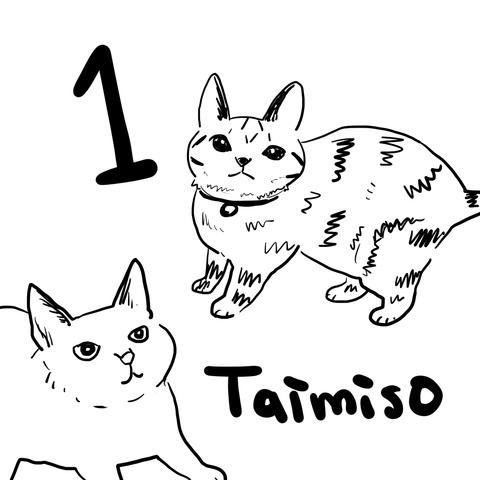 taimiso1