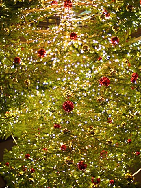 横浜ベイクォーター クリスマスイルミネーション2012-1/OM-D E-M5