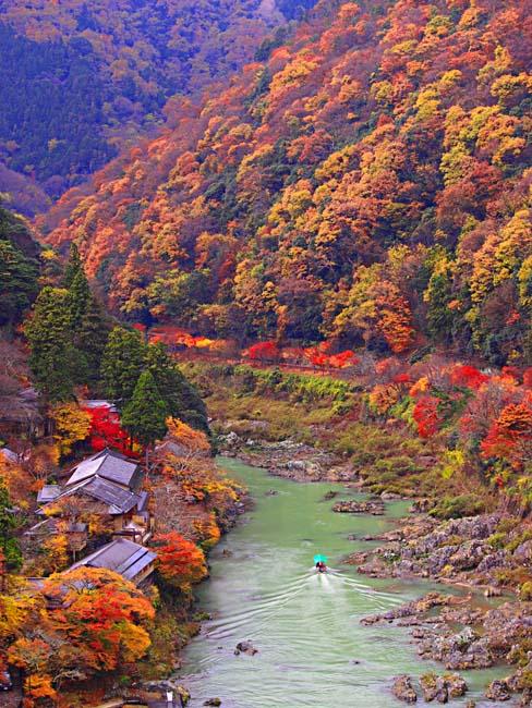 京都・嵐山の紅葉-6/OM-D