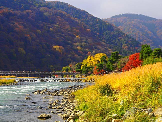 京都・嵐山の紅葉-2/OM-D