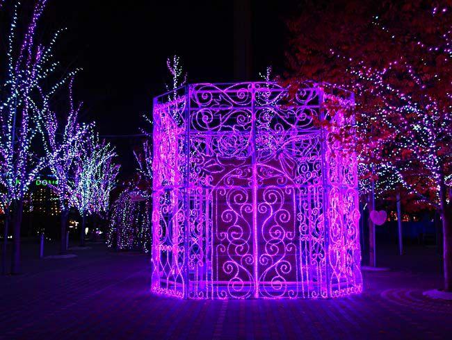東京ドームシティ イルミネーション2012-10/OM-D