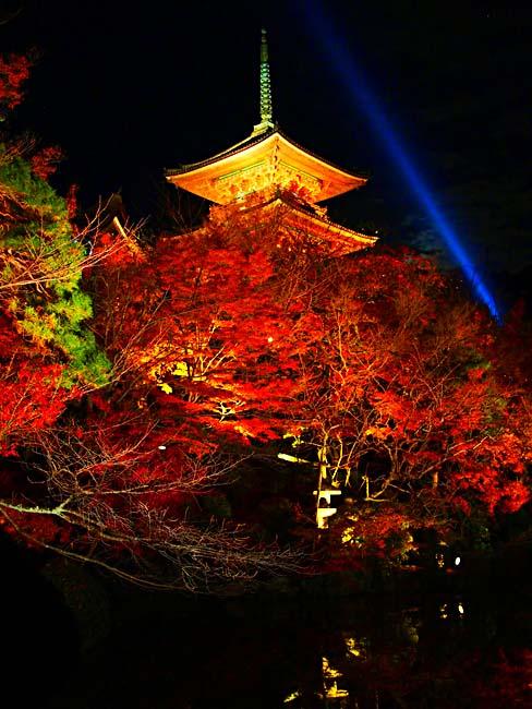 清水寺のライトアップ/OM-D