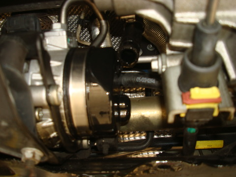 DSC08248