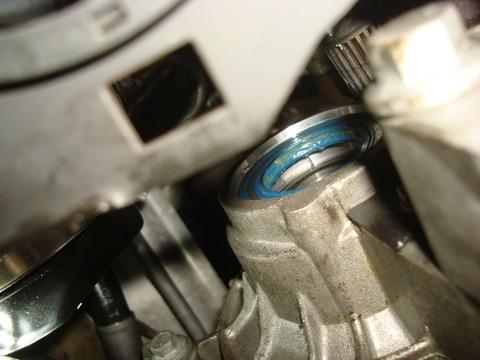 DSC08255