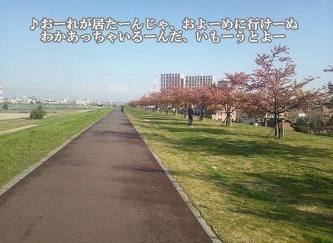 20130321-010.jpg