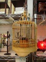 20050823鳥かご
