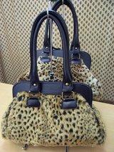 20070908豹1