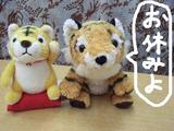 20091129お休みトラ