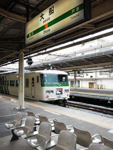 やっぱり東日本カラーが似合う185系 (2)