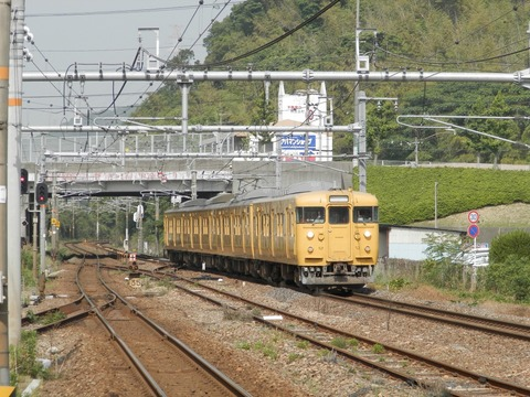 P5290026