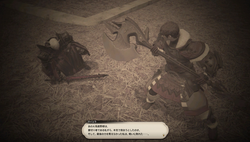【ff14】ロールクエスト038